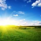 Vitamine D - de zon en nog zeven vitaminenbronnen
