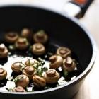 De champignon. Lekker en gezond