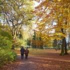 De herfst geeft u de kans om van haar pracht te genieten