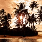 Vakantiegevoel vasthouden, wat is de beste manier?