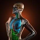 Slecht kunnen ademen door fibrose: longemfyseem COPD