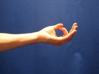 Yoga-mudra / Bron: Onbekend / Wikimedia Commons