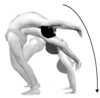 yogahoudingen  urdhva dhanurasana i en ii chakrasana