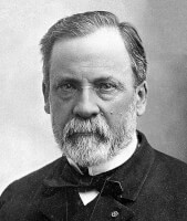 Louis Pasteur (1822-1895) / Bron: Publiek domein, Wikimedia Commons (PD)