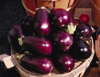 Paarse aubergine / Bron: Unknown author, Wikimedia Commons (Publiek domein)