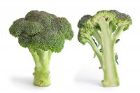 Broccoli (Brassica oleracea) / Bron: Fir0002, Wikimedia Commons (GFDL-1.2)