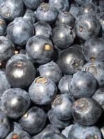 voeding tegen cellulitis