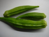 Okra / Bron: Gerard cohen, Wikimedia Commons (CC BY-SA-2.5)