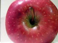 appelazijn wetenschappelijk onderzoek